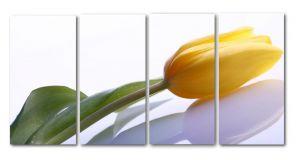 Модульная картина Желтый тюльпан
