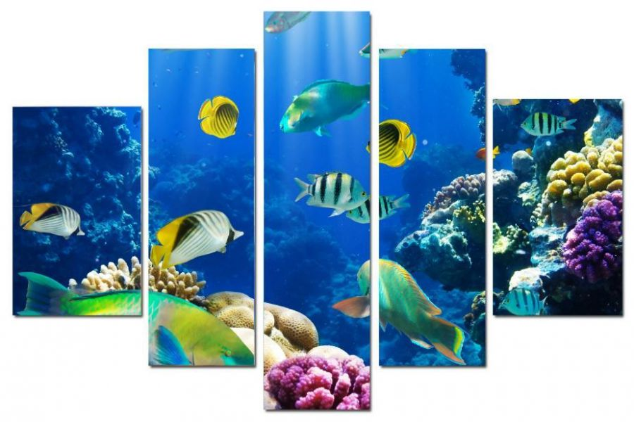 Модульная картина Подводный мир