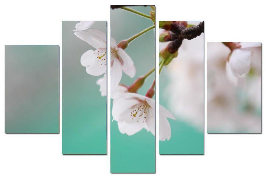 Модульная картина Цветы яблони