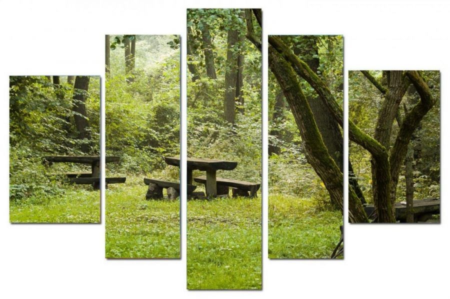 Модульная картина Парк