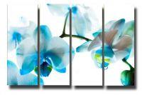 Модульная картина Голубая орхидея