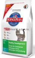 Hill`s SP Feline Kitten with Tuna для котят с тунцом