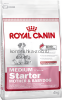 Royal Canin MEDIUM Starter для щенков