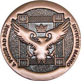 Монета Artifact Copper(US Half Dollar Size)