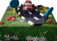 Домашний торт автомобильный «Шкода»