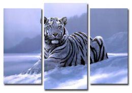 Нарисованый тигр