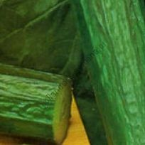 "Огурец сорт ""ПОПРОБУЙ БЮРПЛЕСС Ф1""(Burpless Tasty F1) 10 семян"