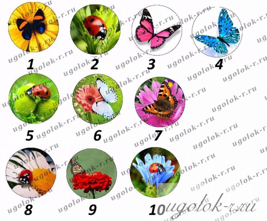 """Картинки для крышечек """"бабочки"""""""