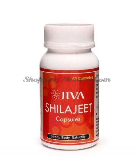 Шиладжит (мумие) для укрепления организма Джива Аюрведа / Jiva Ayurveda Shilajeet Capsules