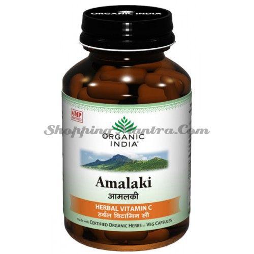 Амла пищевая добавка Органик Индия / Organic India  Amla Capsules