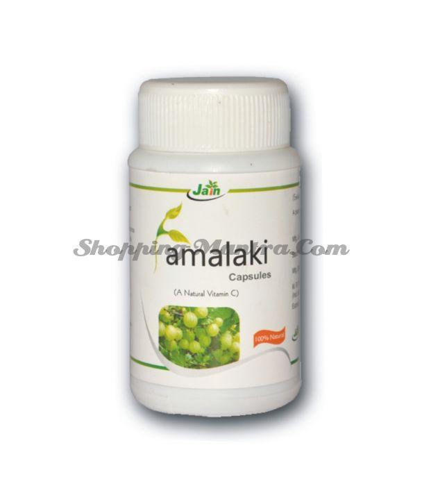 Амла в капсулах натуральный антиоксидант Джайн Аюрведик / Jain Ayurvedic Amlaki Capsules