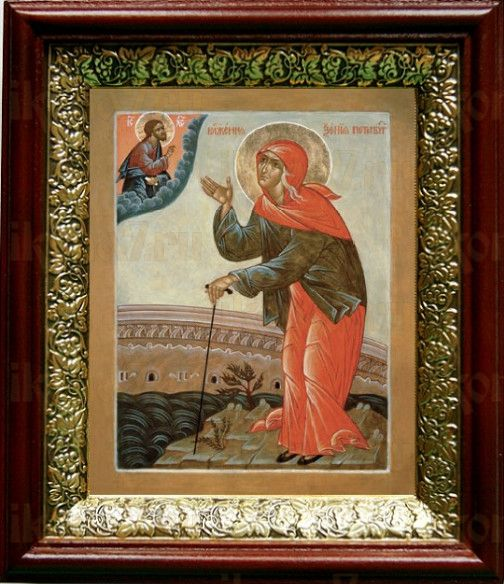 Ксения Петербургская (19х22), темный киот