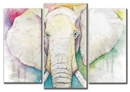 Нарисованный слон