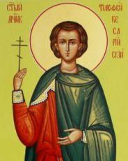 Икона Тимофей Палестинский (рукописная)