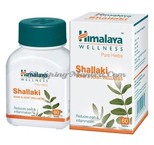 Шаллаки бады Хималая / Himalaya Shallaki