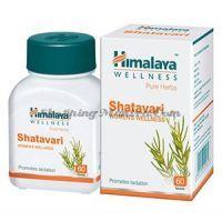 Шатавари Хималая бады (Himalaya Shatavari)