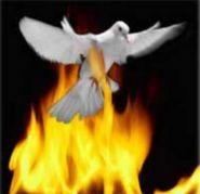 Dove&Fire Book Огненная книга