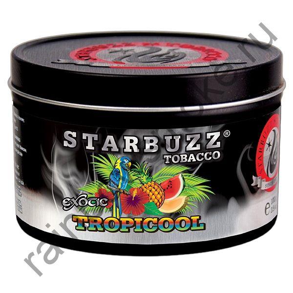 Starbuzz Bold 250 гр - Tropicool (Тропическая Прохлада)