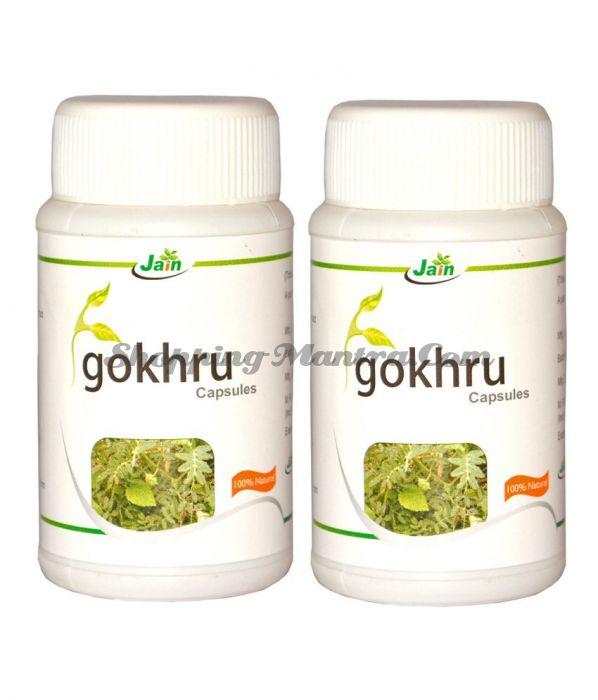 Гокшура для мочеполовой системы Джайн Аюрведик / Jain Ayurvedic Gokhru Capsules