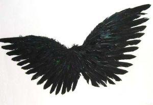 Крылышки Амура перьевые 60 см черные