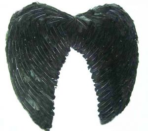 Крылья Ангела перьевые 60 см черные