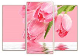 отражение тюльпанов