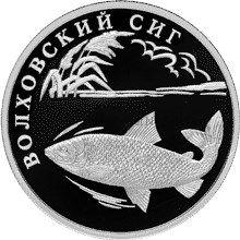 1 рубль 2005 г. Волховский сиг