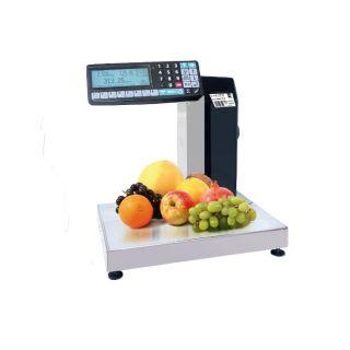 MK-RL10-1 (МК-R2L10-1) - печатающие весы-регистраторы