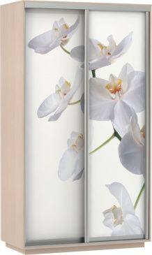 Шкаф-купе Дуо-двухдверный Фото (Орхидея Белая)   E1 Экспресс