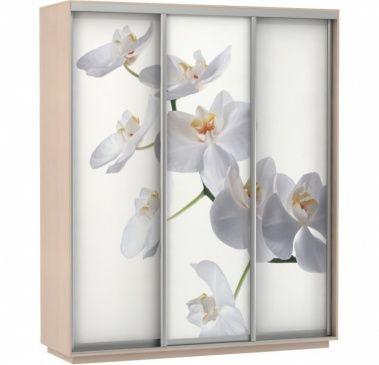 Шкаф-купе Трио-трехдверный Фото (Орхидея Белая) | E1 Экспресс