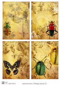 Vintage insects 2