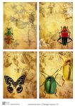 Декупажные карты Vintage insects 2  30 гр/м2