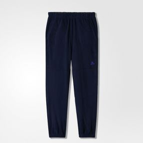 Детские спортивные штаны adidas Bg Fleece Pants синие