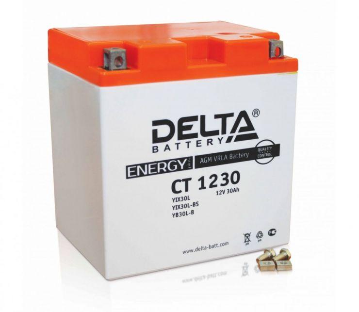 Мото аккумулятор АКБ Delta (Дельта) CT 1230 30Ач о.п. YIX30L-BS