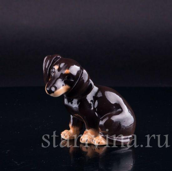 Фарфоровая статуэтка собаки Сидящая такса, миниатюра производства Von Schierholz, Германия, 1950 гг.