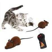 Мышка на пульте управления.
