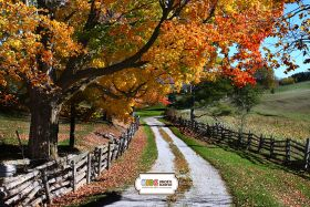 "Фон стена ""Paysage autumn "" 2x1.5"