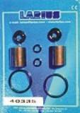 40332 ремкомплект пневмодвигателя Larius 4