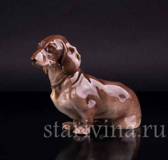 Фарфоровая статуэтка собаки Такса производства Nymphenburg, Германия