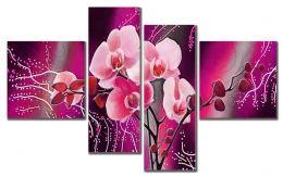 Рисунок орхидей