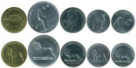 Фауна +Футбол Набор монет. Конго, 2002