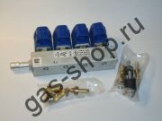Рампа форсунок RAIL IG-1 THOR на 4 цилиндра