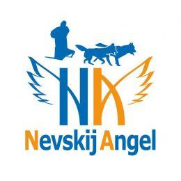 Комплект для каникросса и скиджоринга Невский Ангел