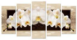 Орхидеи волшебные (размер L)