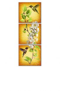 Орхидея и коллибри