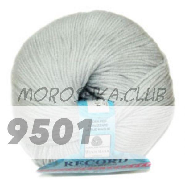 Светло-серый Record BBB (цвет 9501)