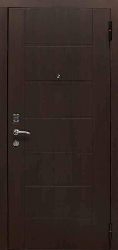 Металлическая дверь Протектор