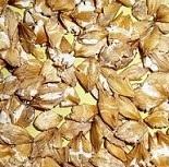 Микронизированные ячменные хлопья 20 кг Вознесеновские корма