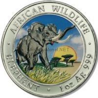 100 шилингов 2009, Сомали, Слон