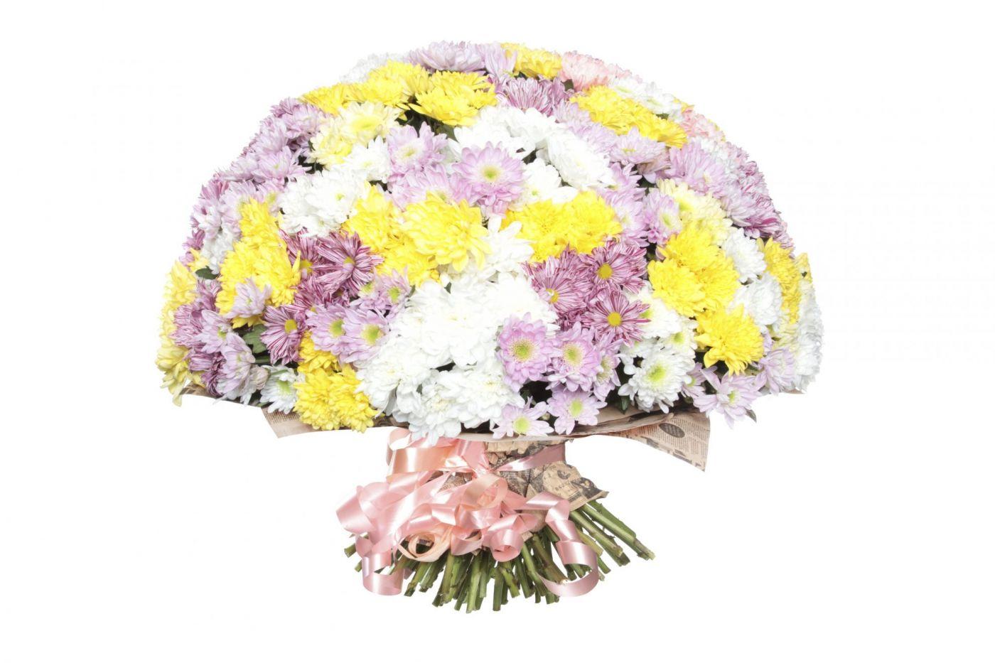 Букет из 25 хризантем кустовых микс